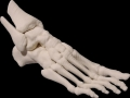 thumbs Foot 1 Medical